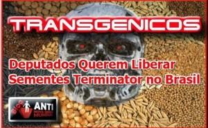 Transgenicos-terminator-538x330
