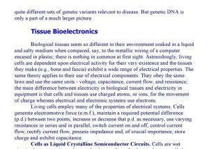 bordon human biominds 3